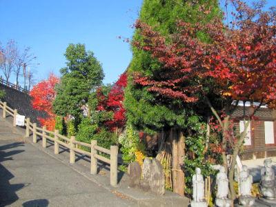 Le jardin du temple