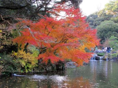 Le lac du Shinshoji Tempel