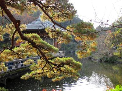 Vue du lac du Shinshoji Tempel