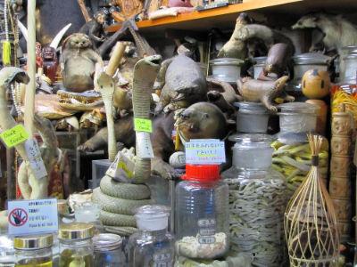 Un des shop du village de Narita