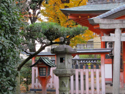 Le jardin du temple de Sanjusangen-do