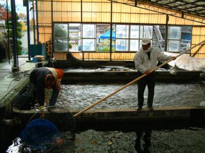 La pêche de Sakai