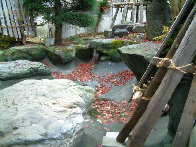 Bassin Hasegawa 3