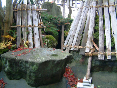 Bassin Hasegawa 4