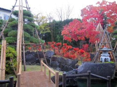 Le jardin 6