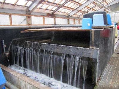 Filtration chez Kase