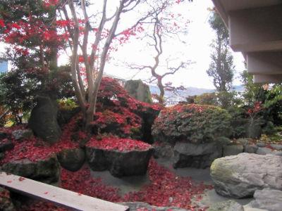 Le jardin de Hasegawa