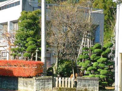 Région Nagaoka