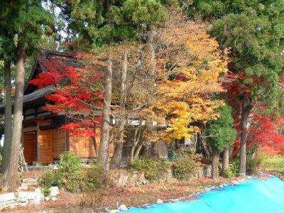 Temple jardin 1