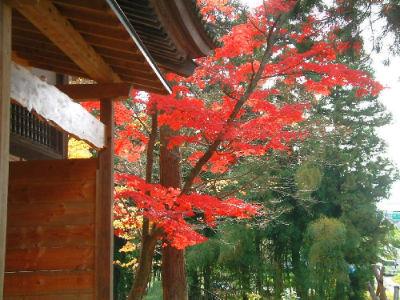 Temple jardin 7