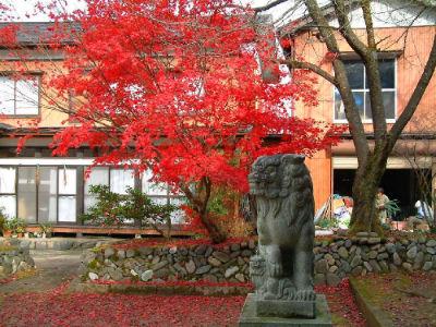 Temple jardin 19