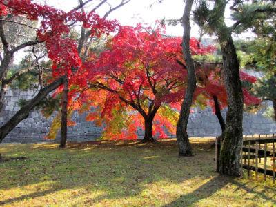 Le bassin autour de Ninomaru