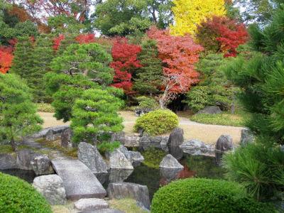 Un bassin dans le palais de Ninomaru