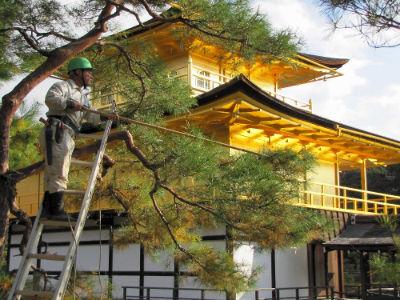 Un coté du temple de Rokuon-Ji