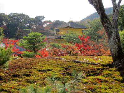 Le haut du jardin de Rokuon-Ji
