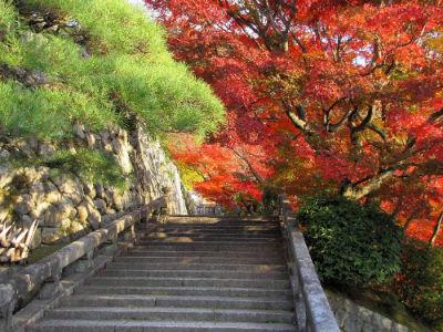 Une allée du Kiyomizu Temple
