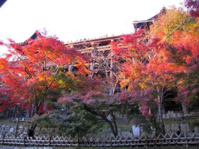 Vue du bas du Kiyomizu Temple